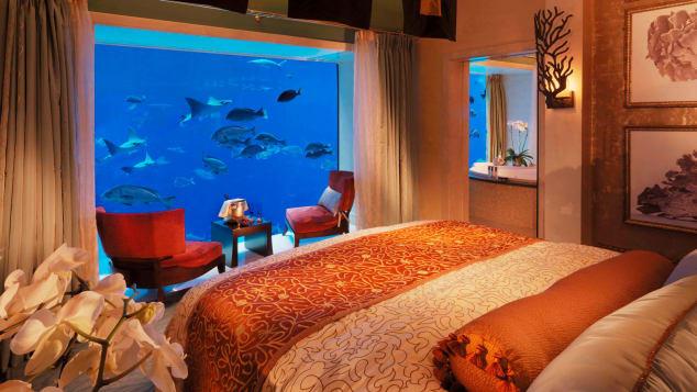 http---cdn.cnn.com-cnnnext-dam-assets-180329162346-the-palm-resort---underwater-suite-the-palm