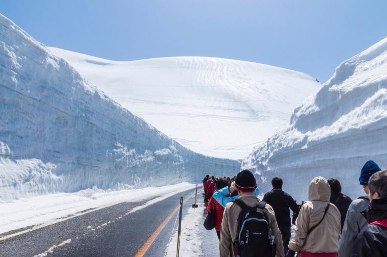 TATEYAMA, JAPAN - MAY 10, 2014: Unidentified tourists walk along snow corridor on Tateyama Kurobe Alpine Route, Japanese Alp in Tateyama, Japan