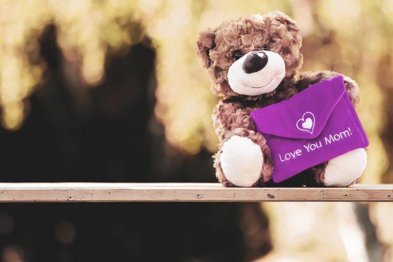 teddy-5121665_1920